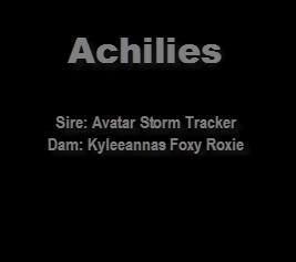 achili1